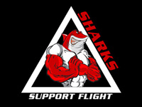 U.S. Air Force Recruiting Support Logo